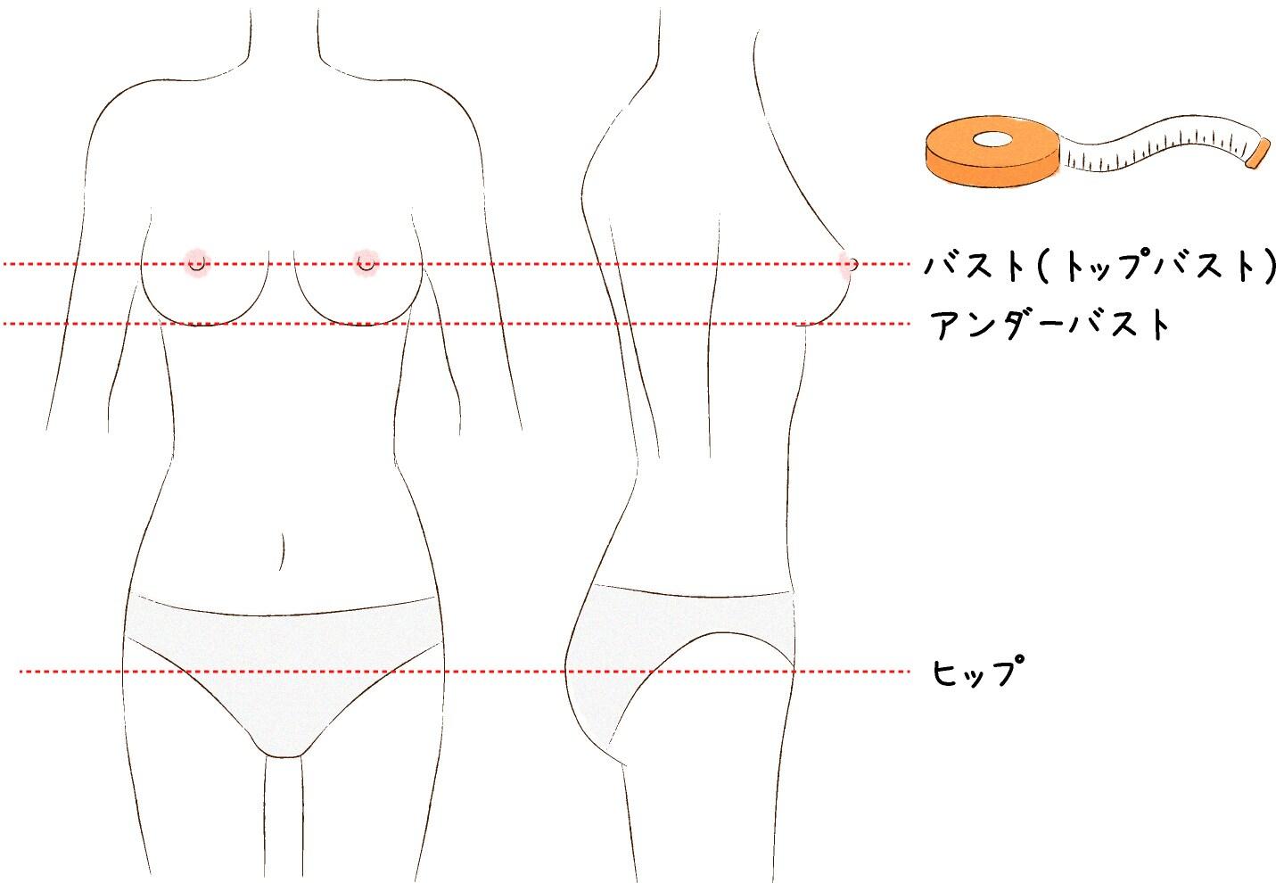 サイズ 計算 胸