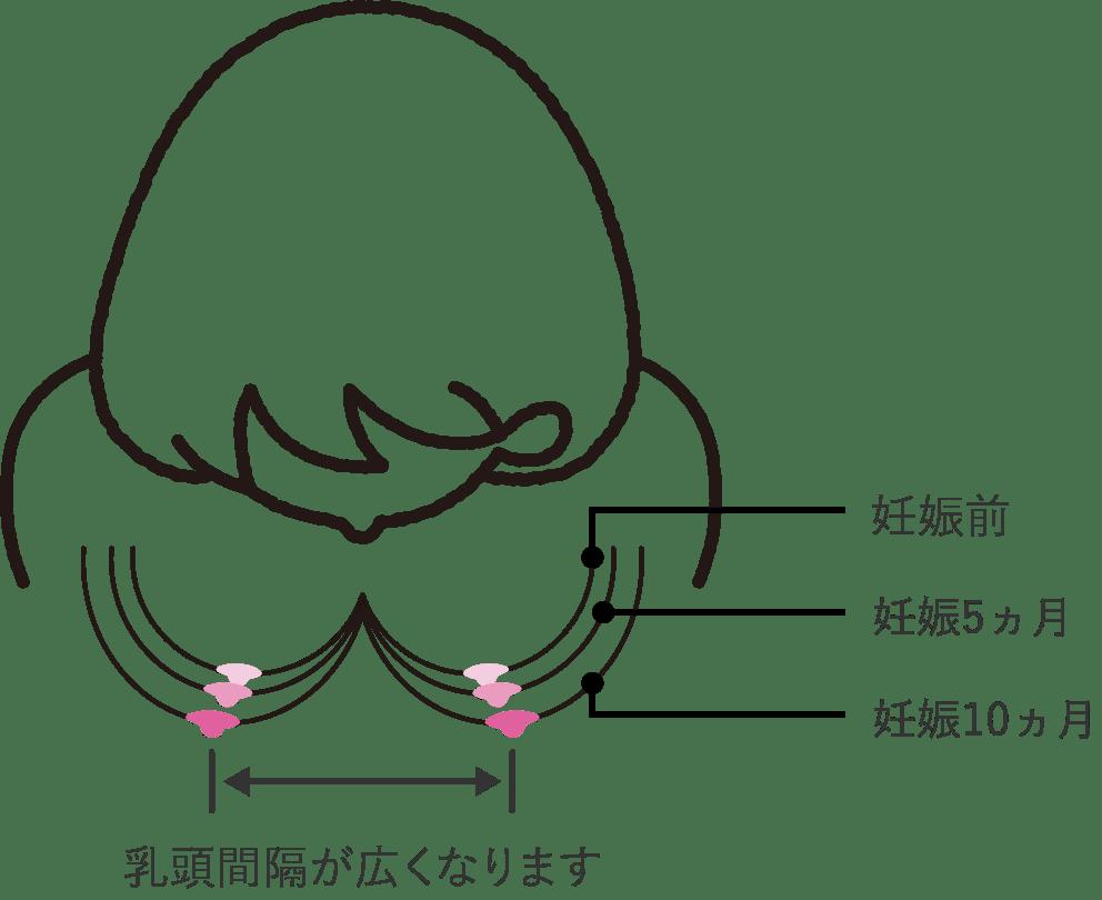 の 張り 超 妊娠 初期 胸